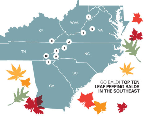 fall foliage map