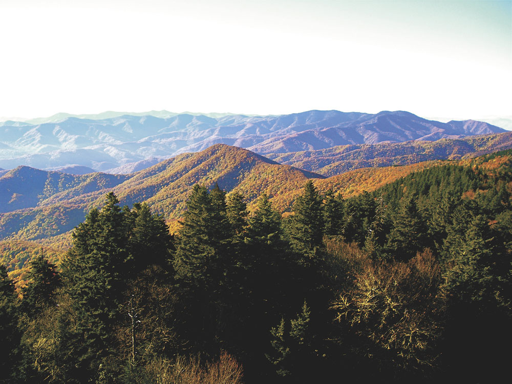 Autumn views from Mount Sterling Lookout Tower in Great Smoky Mountains National Park.