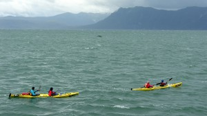 Patagonia Race - Kayaking