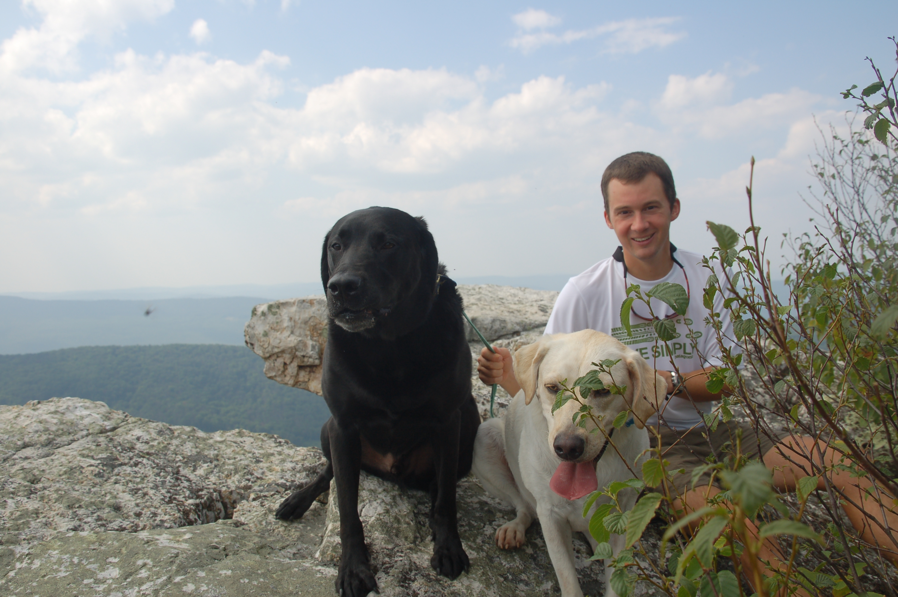 Whit and the dogs at the Hanging Rock Overlook