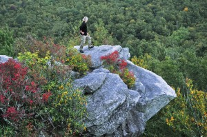 A hiker pauses at an outcropping along the Tanawha Trail near Grandfather Mountain, N.C. Photo by Todd Bush.
