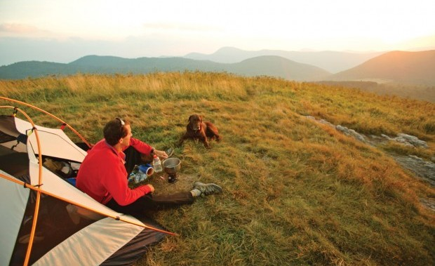 Male camper and dog cook dinner at camp at sunset along the Art Loeb Trail in the Pisgah National Forest, NC.