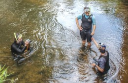 Fish Eye View: Biologists evaluate mussels in the Little River.