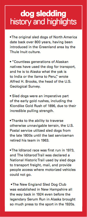 History of Dog Sledding in the South