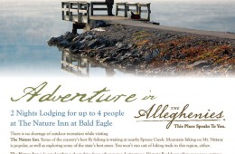 Win 2 Nights Lodging for up to 4 people at The Nature Inn at Bald Eagle!