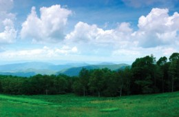 Coming Home to the Blue Ridge