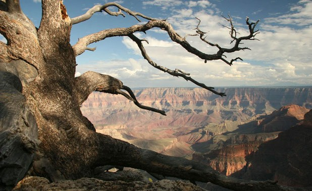 The federal government stopped future mining at and around Grand Canyon National Park