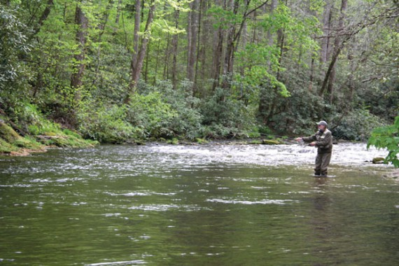 Fly fishing on the Nolichucky