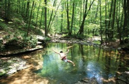 alleghany swim hole