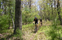 Mountain Biking in Virginia