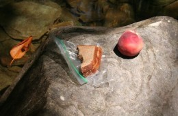 Peanut Butter and Jelly Sandwich: The Perfect Trail Food