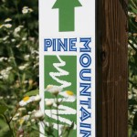 At the cross roads of the Pine Mountain Trail