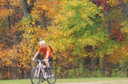 Fall Foliage Races