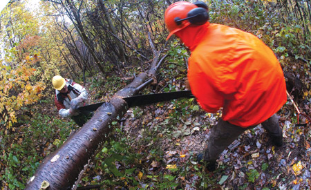 You may not have to operate a two man saw, but clearing debris and wielding a shovel are just as good.
