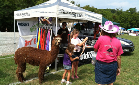 At the Smith River Fest, anything can and will happen. Last year, this llama stole the show.