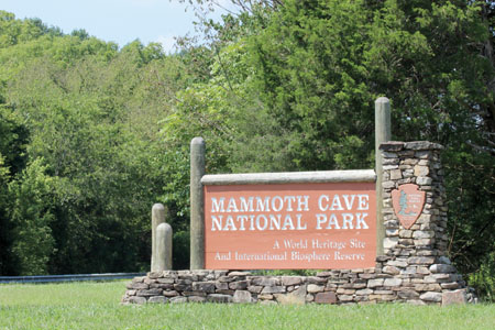 Mammoth Cave National Park was officially established on July 1, 1941. In 1981 it was designated as a World Heritage Site and in 1990 it became the core area of an International Biosphere Reserve. The first tour of Mammoth Cave was in 1816. Photo: Jess Daddio