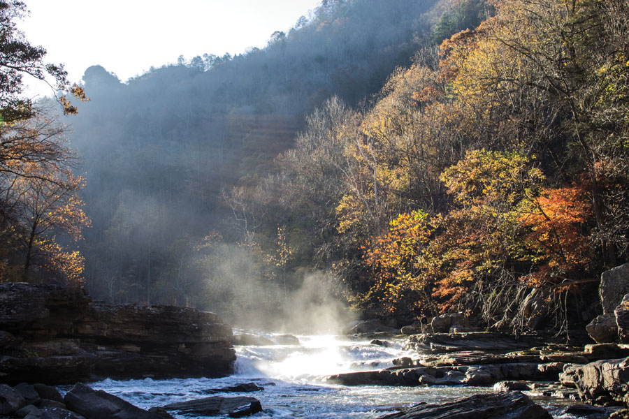 Early morning on the Russell Fork Gorge.