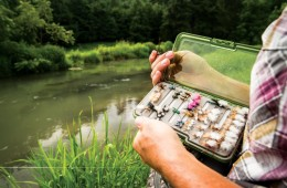 Top Trout Waters of the Southeast