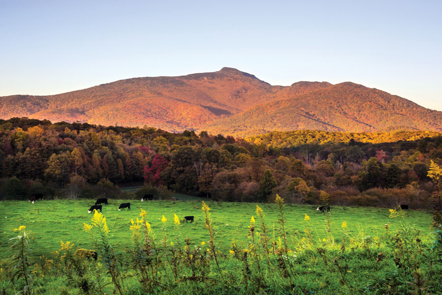Experience breathtaking views of Grandfather Mountain along the Blue Ridge Parkway.