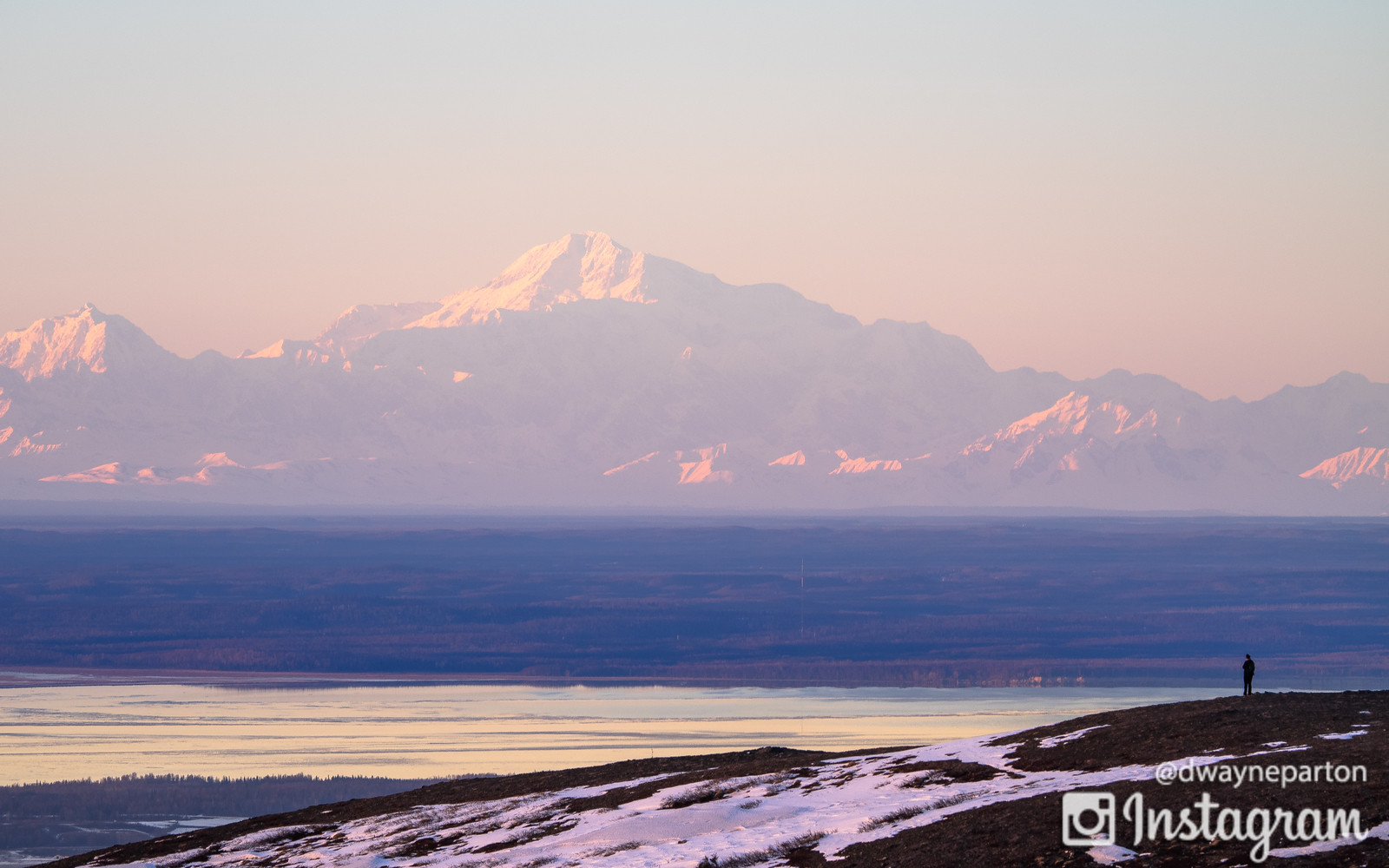 View of Denali from Flattop