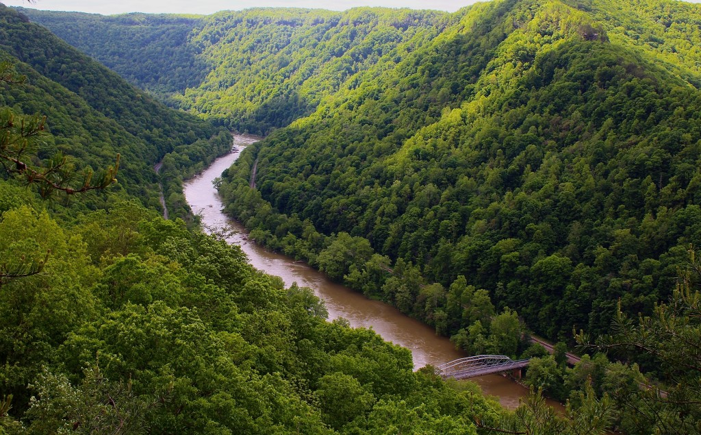 An Insider S Guide To Exploring The New River Gorge