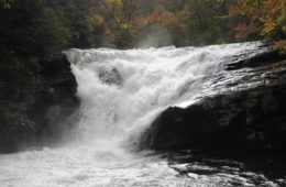 Chattooga Conservancy