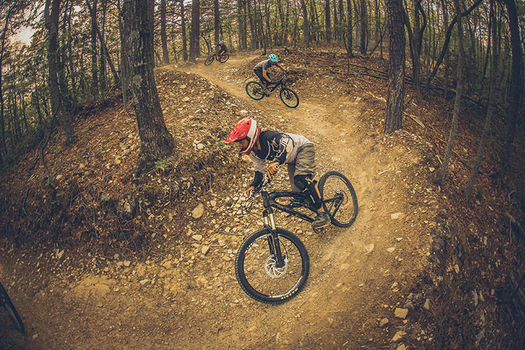 Roanoke Mountain Biking