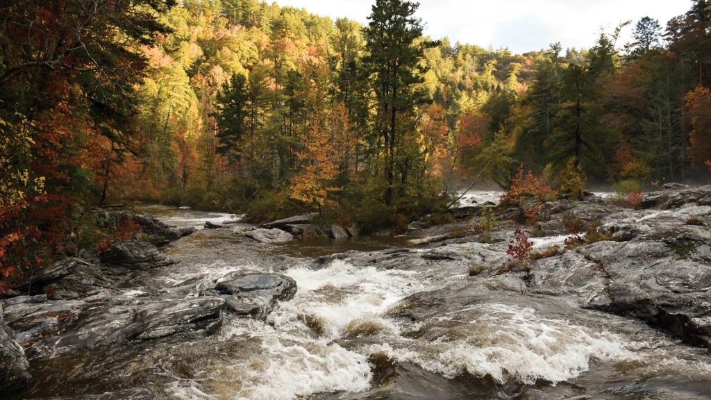 The Chattooga River