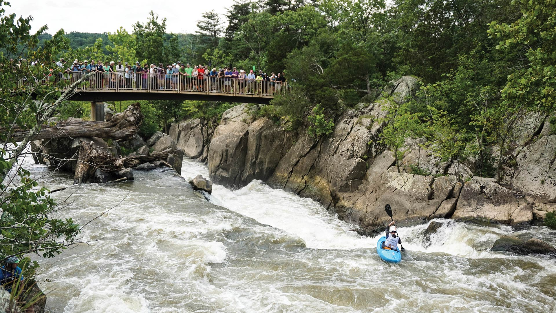 PADDLING GREAT FALLS, JUST OUTSIDE OF WASHINGTON, D.C. / PHOTO BY LAURA FARRELL