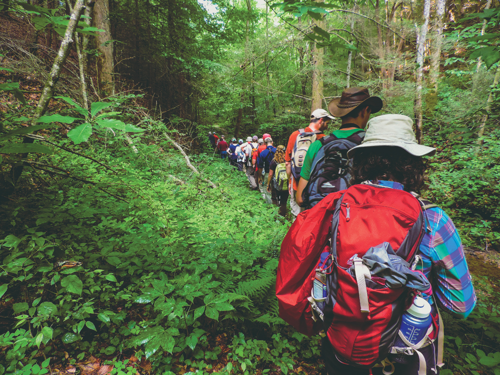 Hikers crowd a trail during a group hike in eastern Kentucky.