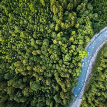 Drone used to find blind man lost in the forest for over 30 hours