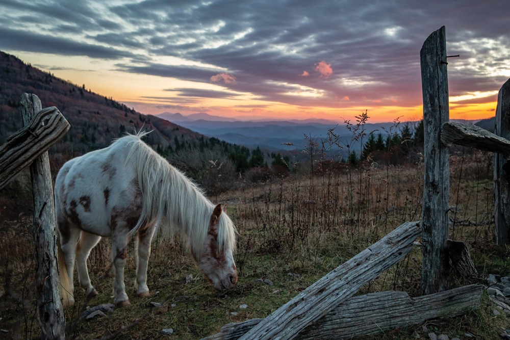 Grayson Highlands State Park road trips