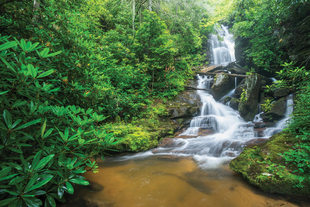 Reese Place Falls in Headwaters State Forest