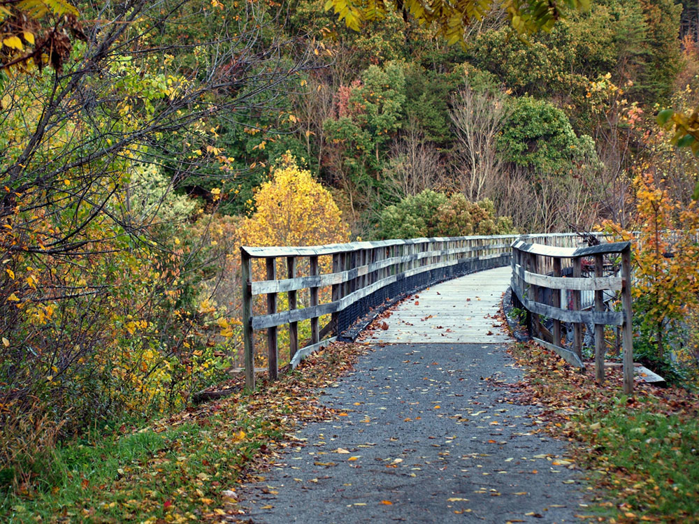 a bridge along the new river trail in a virginia state park
